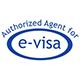 e-visa_icon
